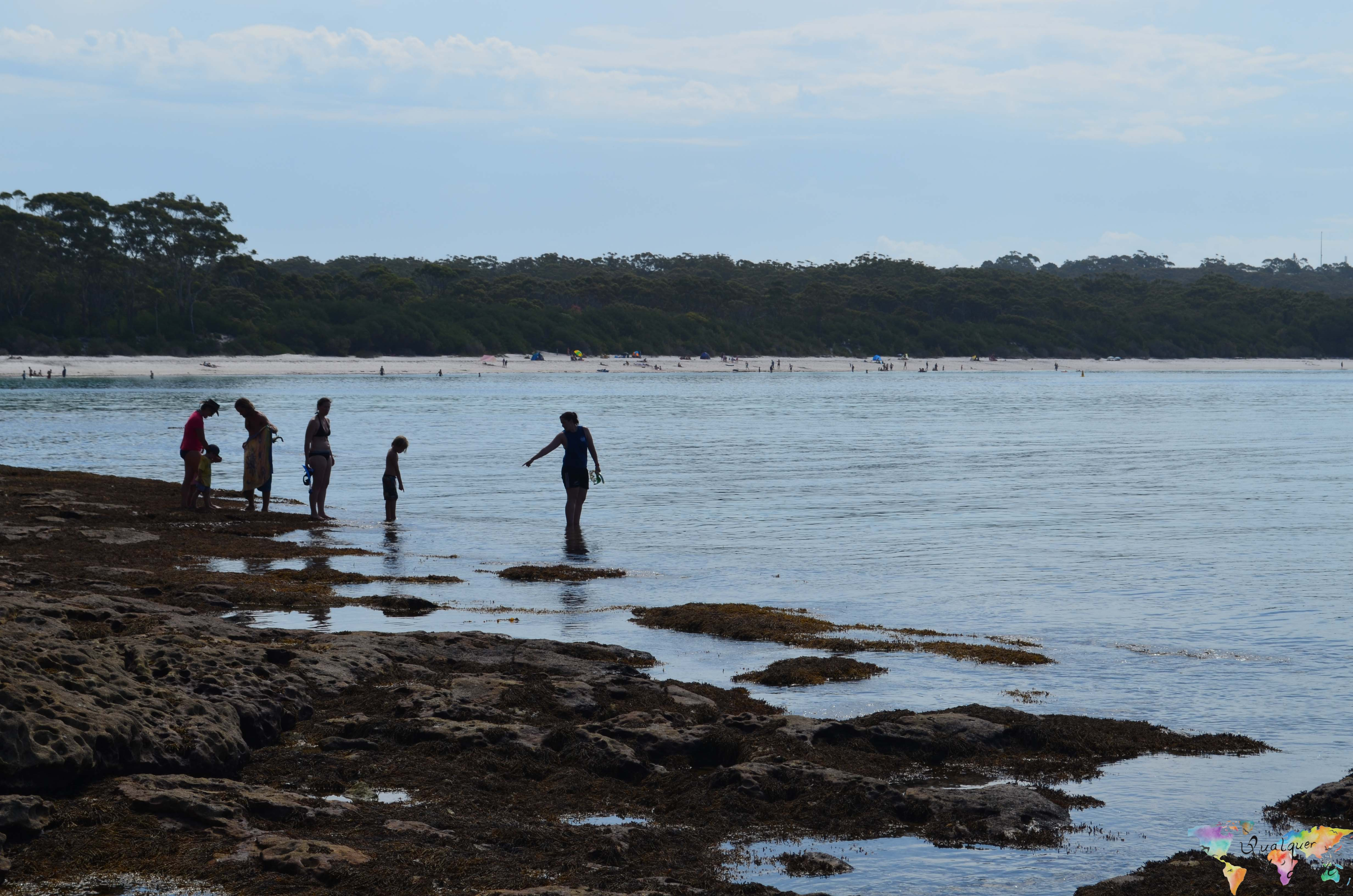Jervis Bay (4 of 11)